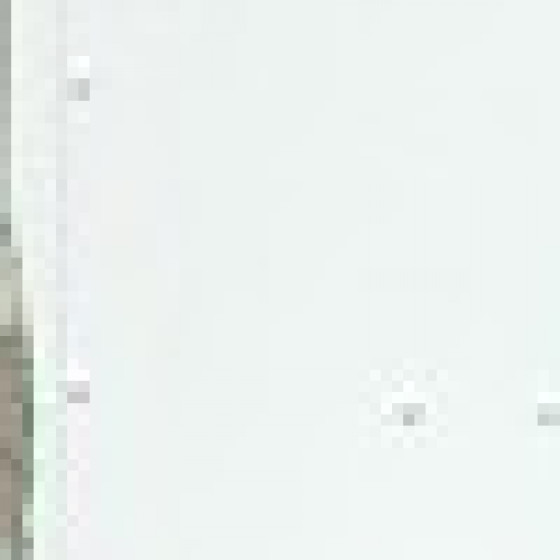 Solutions for Carriers, Postal Organizations & Logistics Fleets